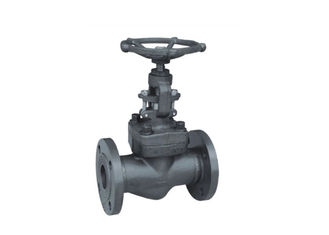 Professional Straight Globe Valve , Forged Steel Globe Valve With Manual Actuator